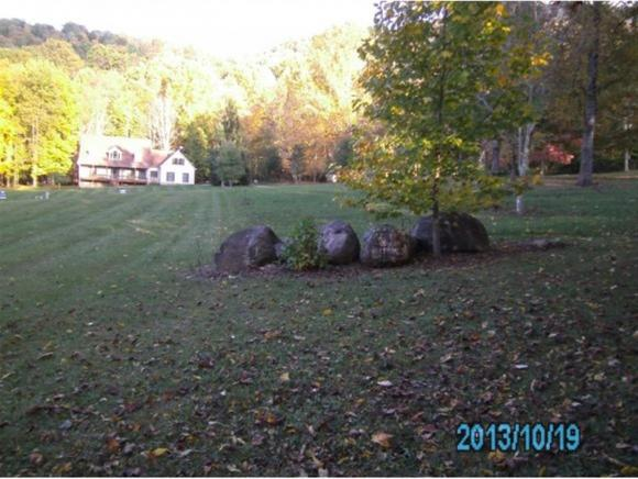 Lots and Land - Roan Mountain, TN (photo 5)