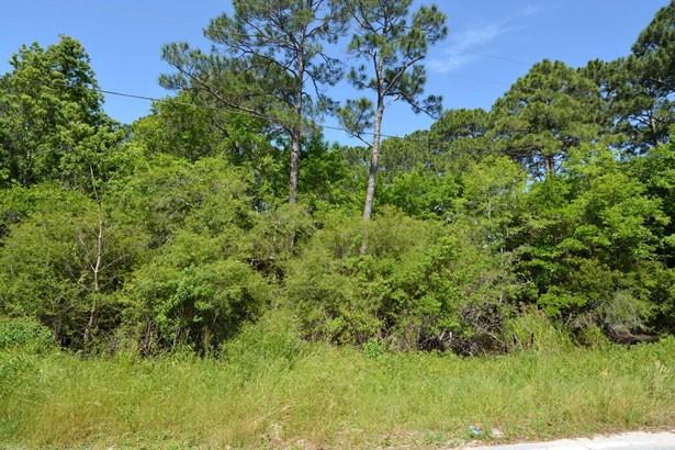 Lots and Land - Freeport, FL (photo 4)