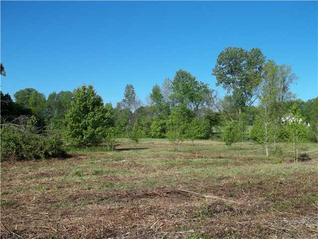 Lots and Land - Atoka, TN (photo 2)