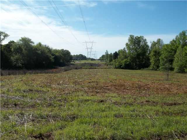 Lots and Land - Atoka, TN (photo 5)