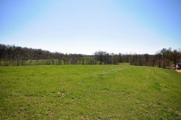 Lots and Land - Seligman, MO (photo 1)