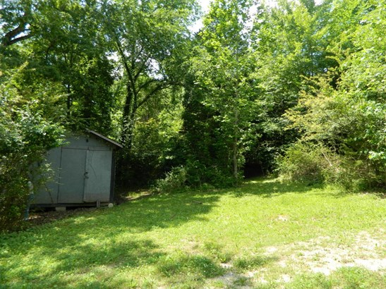 Lots and Land - Oliver Springs, TN (photo 3)