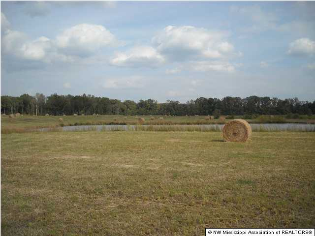 Lots and Land - Byhalia, MS (photo 4)