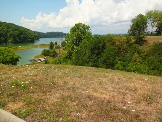 Lots and Land - Russellville, TN (photo 4)