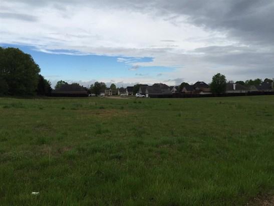 Lots and Land - Lakeland, TN (photo 3)