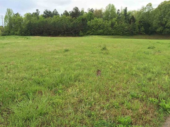 Lots and Land - Lakeland, TN (photo 5)
