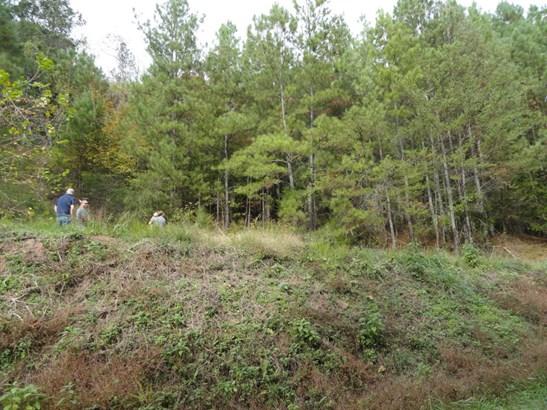 Lots and Land - Maynardville, TN (photo 2)