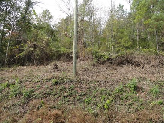 Lots and Land - Maynardville, TN (photo 3)