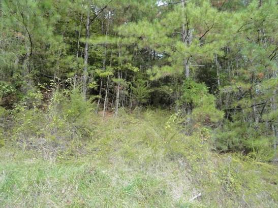 Lots and Land - Maynardville, TN (photo 4)