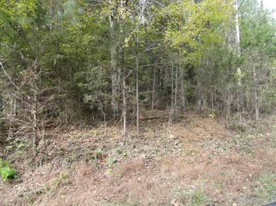 Lots and Land - Maynardville, TN (photo 5)