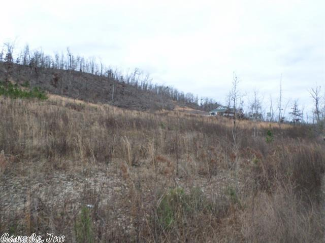 Lots and Land - Paron, AR (photo 3)