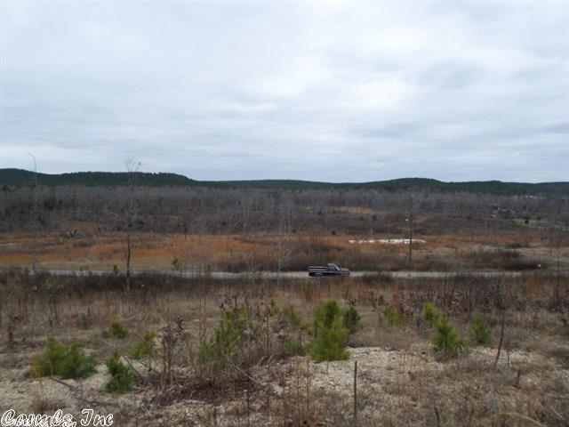 Lots and Land - Paron, AR (photo 4)