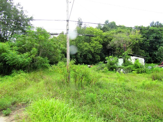 Lots and Land - Mount Pleasant, TN (photo 3)