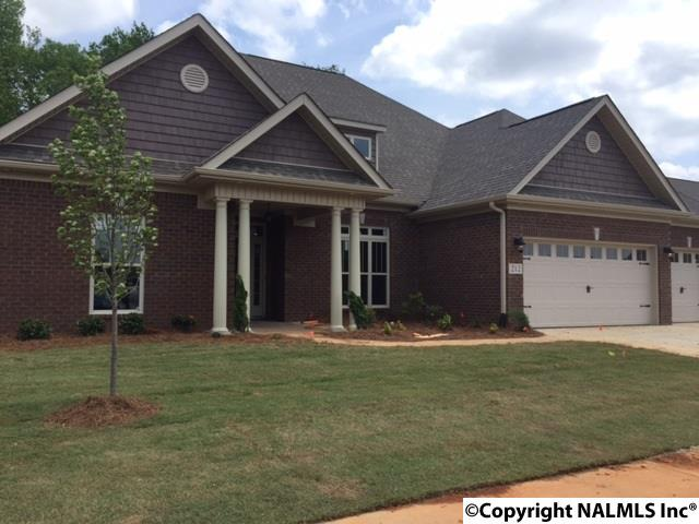 Residential/Single Family - MADISON, AL (photo 1)