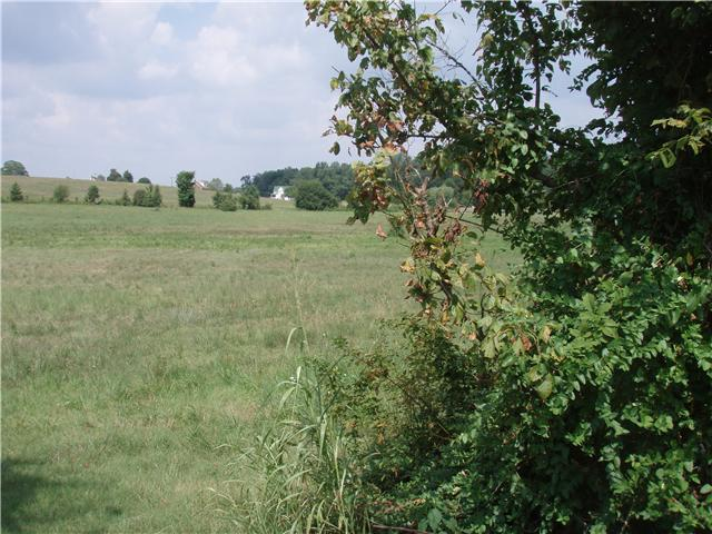 Lots and Land - Cottontown, TN (photo 3)