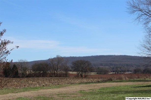 Lots and Land - NEW MARKET, AL (photo 2)