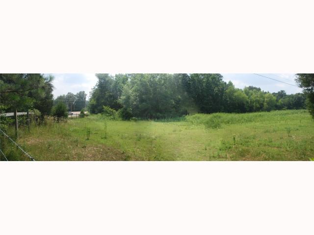 Lots and Land - Arlington, TN (photo 1)