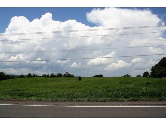 Lots and Land - Limestone, TN (photo 2)