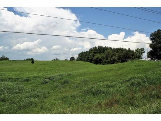 Lots and Land - Limestone, TN (photo 3)