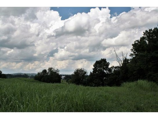 Lots and Land - Limestone, TN (photo 4)