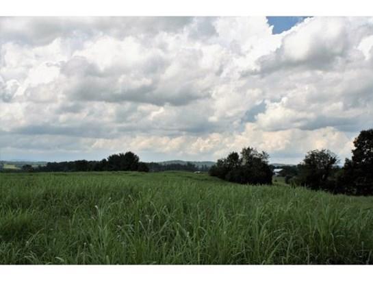 Lots and Land - Limestone, TN (photo 5)
