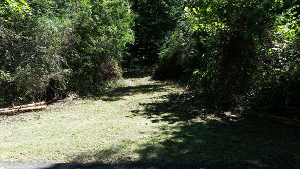 Lots and Land - Kingston, TN (photo 1)