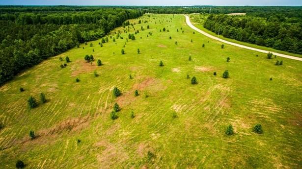 Lots and Land - Mc Ewen, TN (photo 1)