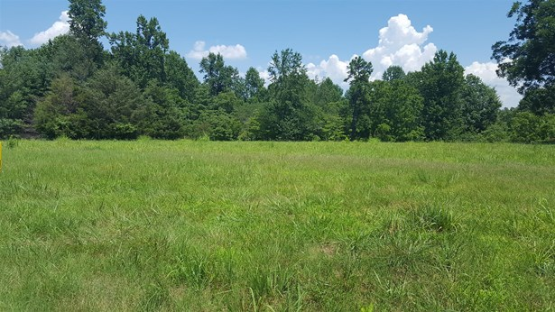 Lots and Land - Goodspring, TN (photo 3)