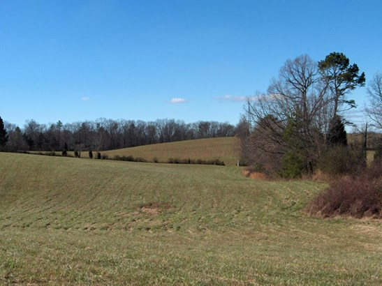 Lots and Land - Loudon, TN (photo 4)