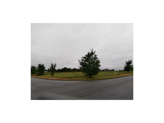 Lots and Land - Adairsville, GA (photo 4)