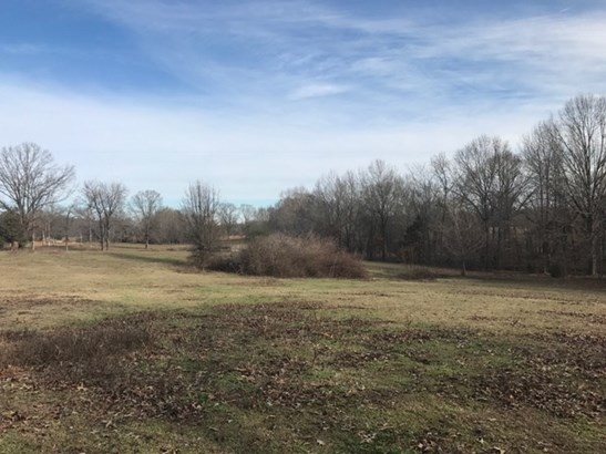 Lots and Land - Eads, TN (photo 3)