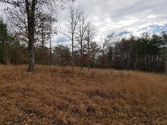 Lots and Land - Deer Lodge, TN (photo 4)