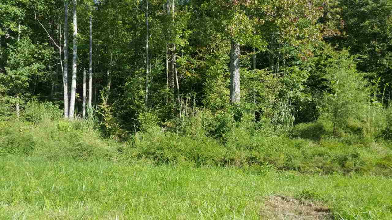 Lots and Land - Holladay, TN (photo 5)