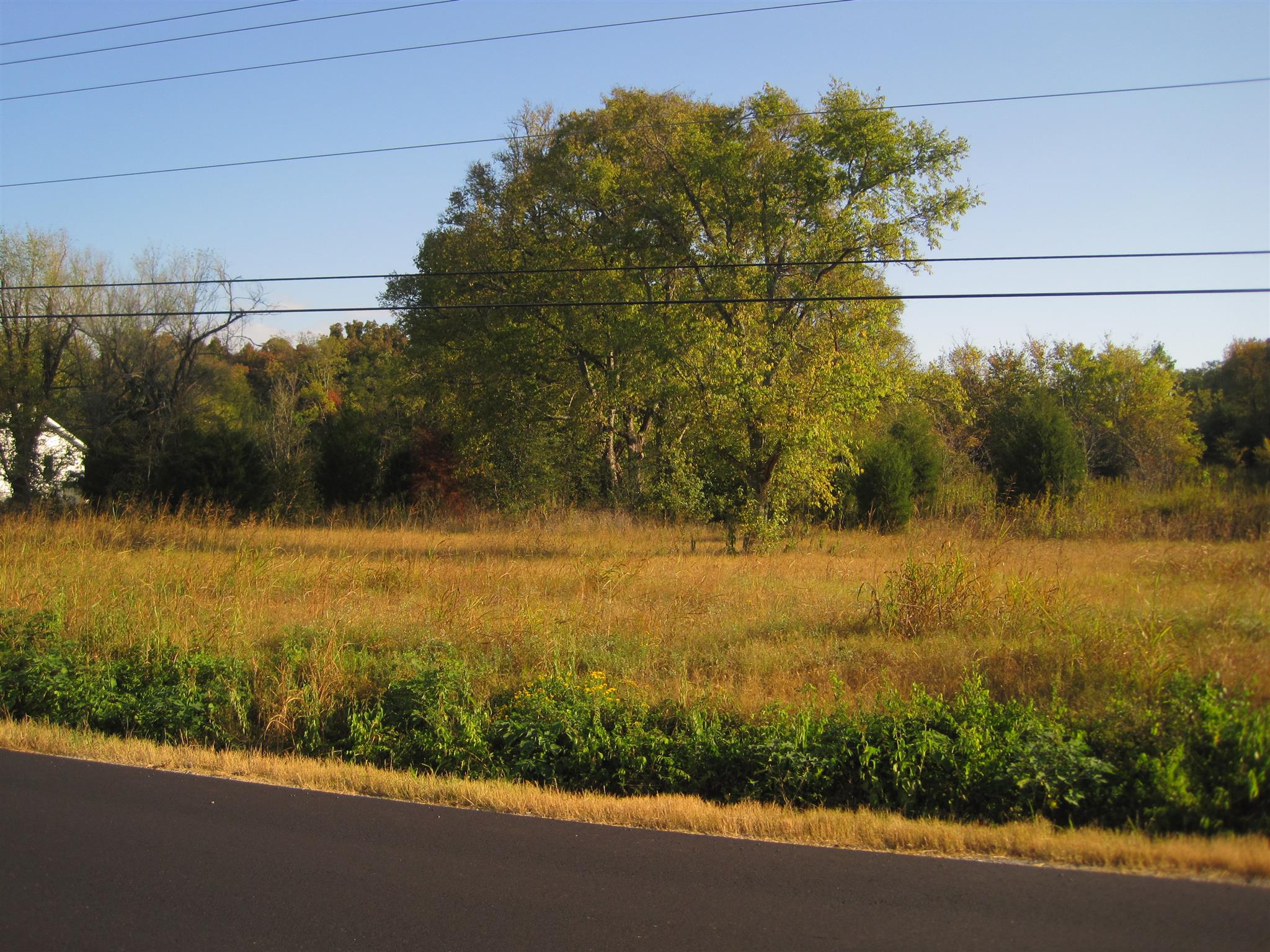 Lots and Land - Spring Hill, TN (photo 2)