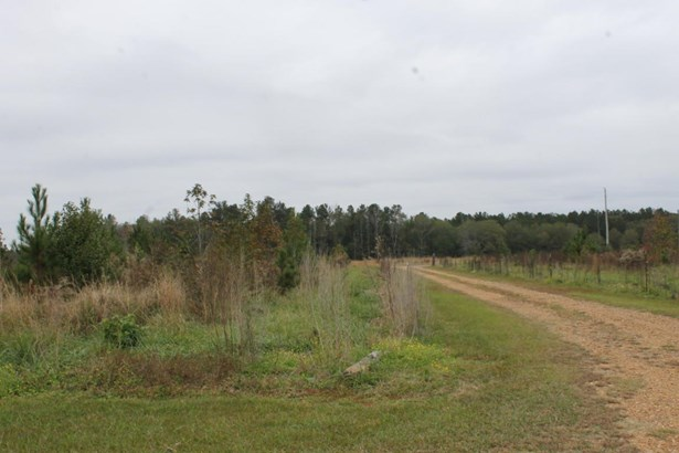 Residential/Single Family - Caledonia, MS (photo 5)