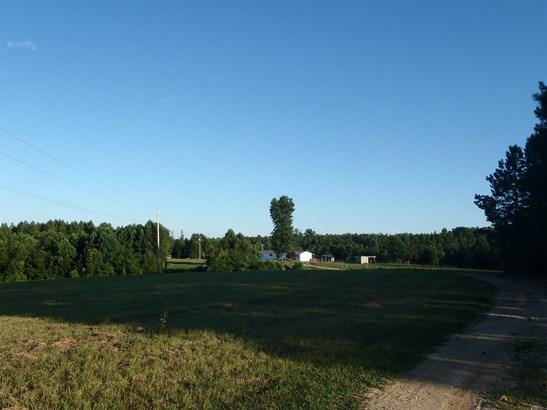 Residential/Single Family - Centerville, TN (photo 2)