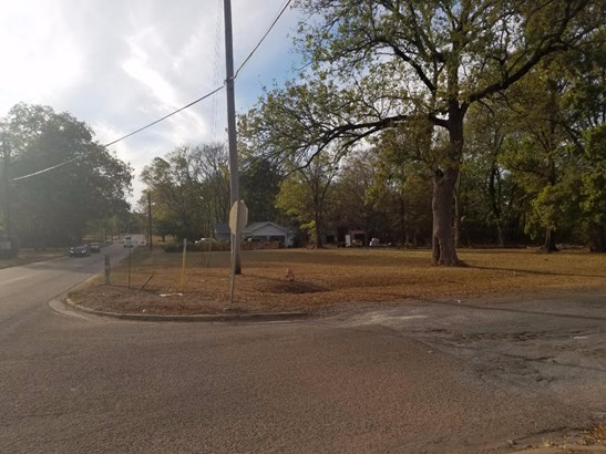 Lots and Land - Okolona, MS (photo 3)