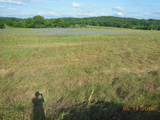 Lots and Land - Madisonville, TN (photo 5)