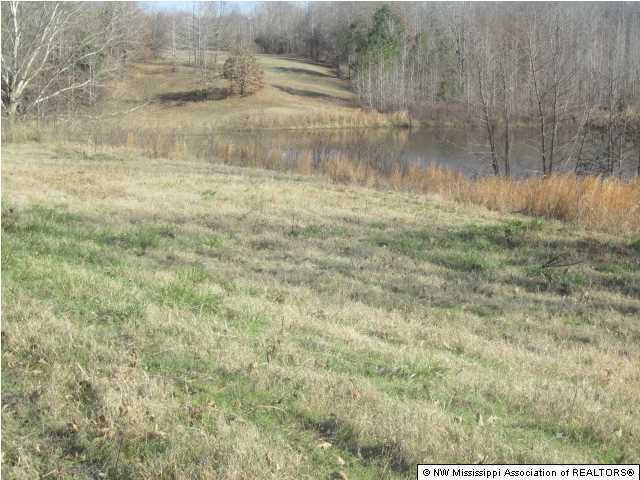 Lots and Land - Lamar, MS (photo 4)