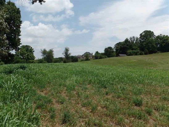 Lots and Land - Jefferson City, TN (photo 4)