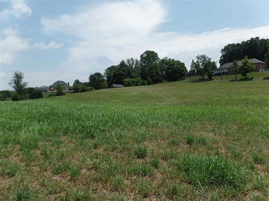 Lots and Land - Jefferson City, TN (photo 5)