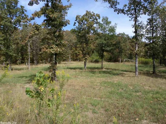 Lots and Land - Alexander, AR (photo 4)