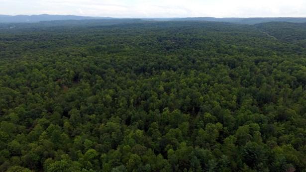 Lots and Land - Winfield, TN (photo 3)