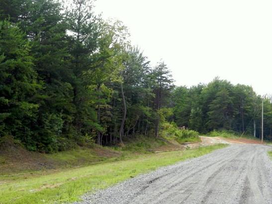 Lots and Land - Winfield, TN (photo 4)