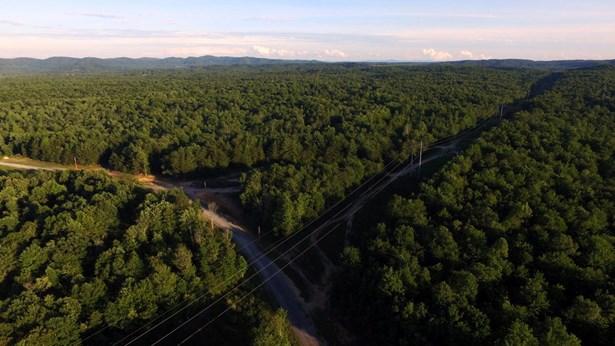 Lots and Land - Winfield, TN (photo 5)