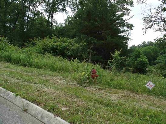Lots and Land - Talbott, TN (photo 3)