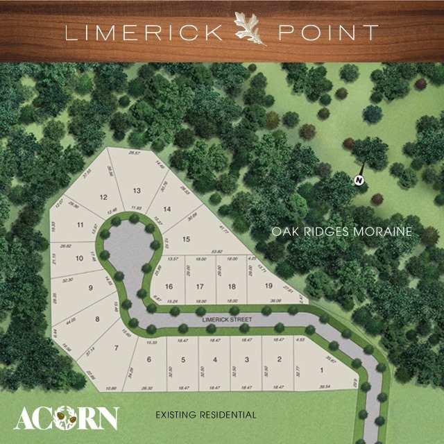 Lot 10 Limerick St, Richmond Hill, ON - CAN (photo 3)