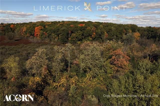 Lot 16 Limerick St, Richmond Hill, ON - CAN (photo 5)