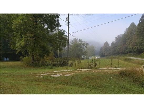 199 Long Branch, Hamlin, WV - USA (photo 4)