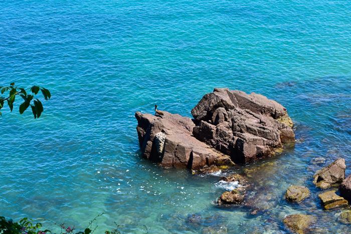 Puerto Vallarta - MEX (photo 4)